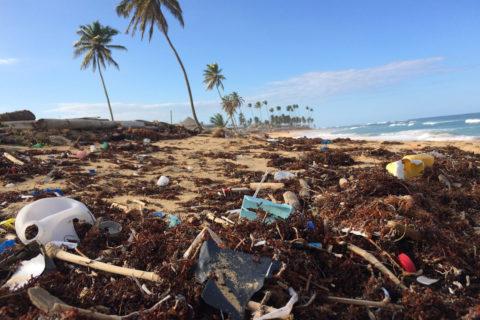 Toneladas de escombros en vertederos ilegales